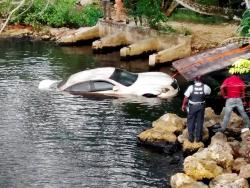 A Nissan Fuga motor car being pulled from the Salt Creek River in Westmoreland yesterday.